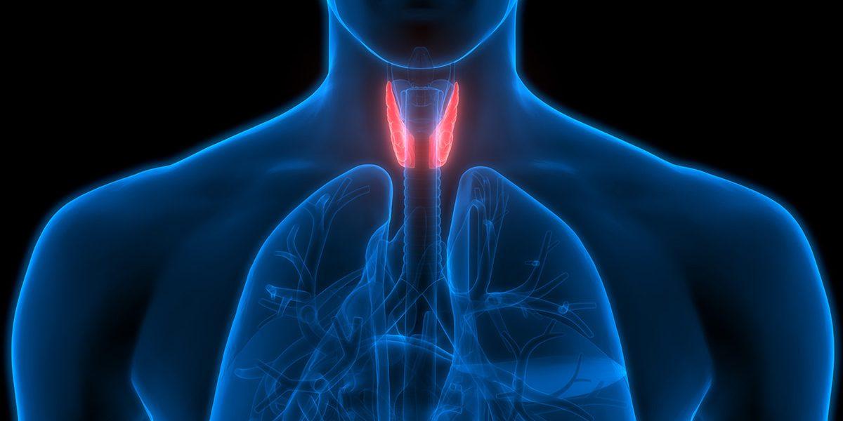 Lipotiroidismo può causare dolori alle articolazioni, ipotiroidismo secondario è...